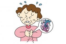 【中药方剂】开胃汤(治疗胃口不好,消化不良,积食,厌食)