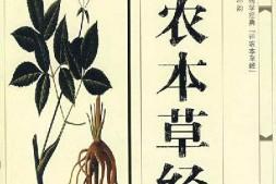 中医书籍《神农本草经》在线阅读-《神农本草经》电子书免费下载