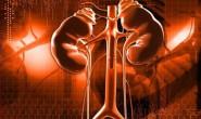 【病理知识】什么是尿毒症