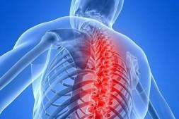 【病理知识】强直性脊柱炎(AS)病理是什么?